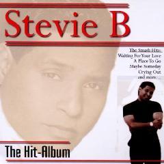 The Hit Album